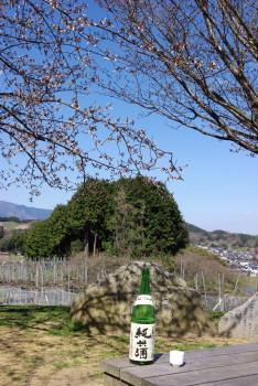 高松塚酒_1