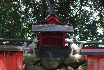 稲荷神社2_1