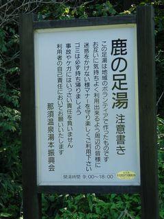 2008_0908BE.jpg