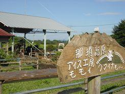 2008_0908BG.jpg