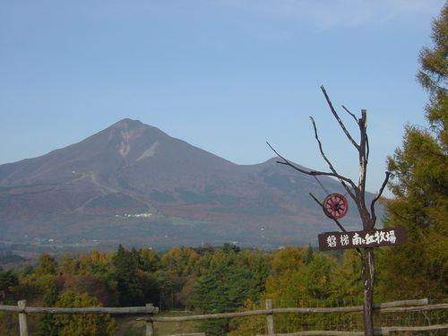 2008_1106AA.jpg