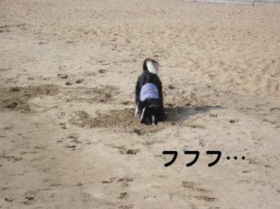 コピー ~ 海20