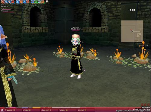 mabinogi_2008_11_28_001.jpg
