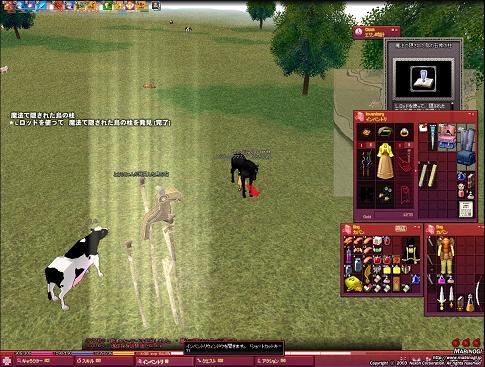 mabinogi_2008_12_07_001.jpg