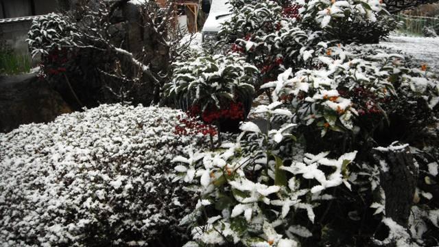 1-26-1_20120126080518.jpg