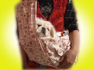 犬猫用スリング試作品