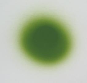airb2-8.jpg