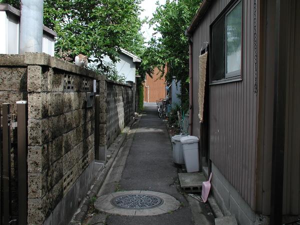 20080525_053