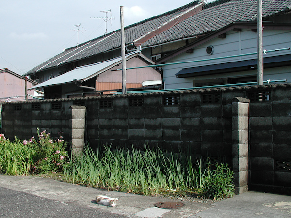 20080603_048