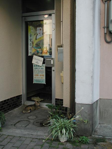 20080613_038
