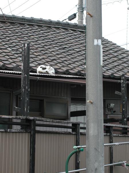 20080618_030