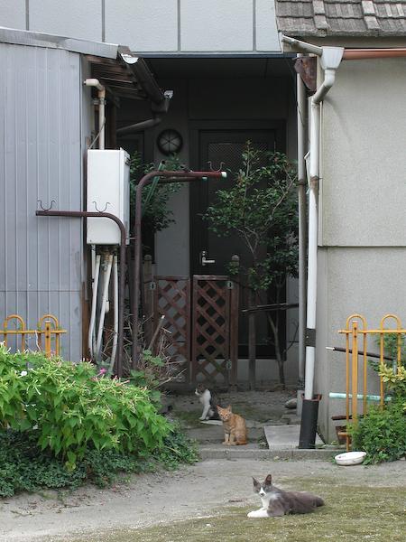 20080715_024