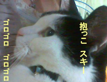 20080301220808.jpg