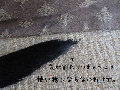 IMG_1719.jpg