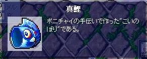 051004.jpg