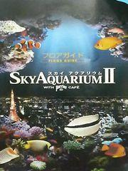 080929水族館1