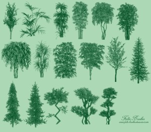 Trees Brushes Set2 by Falln-Brushes