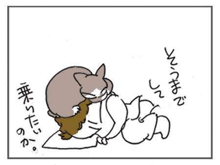 20080517_4.jpg