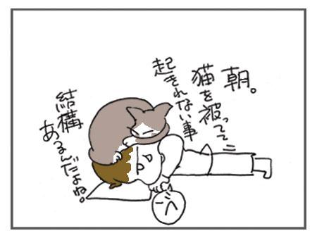 20080517_7.jpg