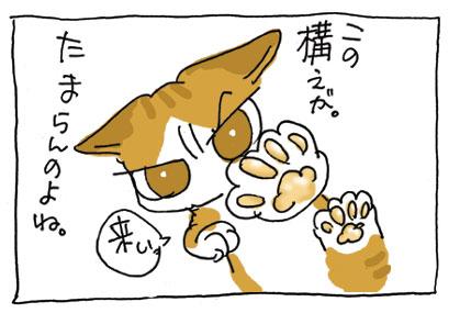 20080518_7.jpg