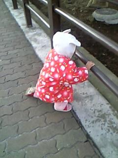 rikotan2009-03-20-01