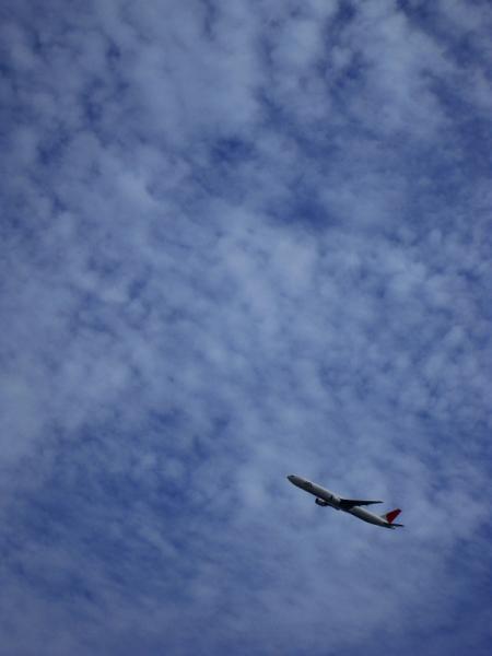 JAL B777-346 JL2081@瑞ヶ池公園周辺(by IXY DIGITAL 910IS)