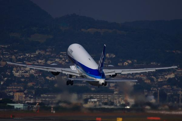 ANA B767-381 NH523@伊丹スカイパーク(by 40D with EF100-400)