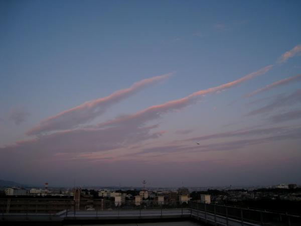 夕空(東編)@瑞ヶ池公園周辺(by IXY DIGITAL 910IS)