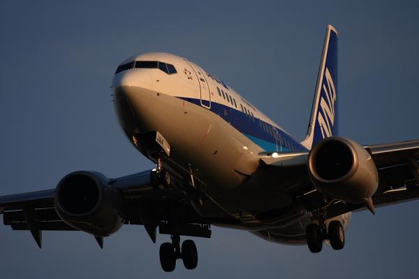 ANA B737-781 NH446@東水門(by 40D with EF100-400)