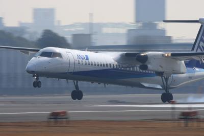 ANA DHC8-Q400 NH1606@スカイランドHARADA(by EF100-400)