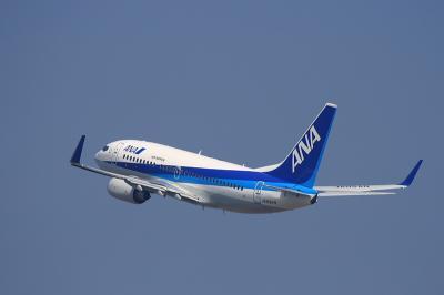 ANA B737-781 NH185@RWY14Rエンド/猪名川土手(by EF100-400)