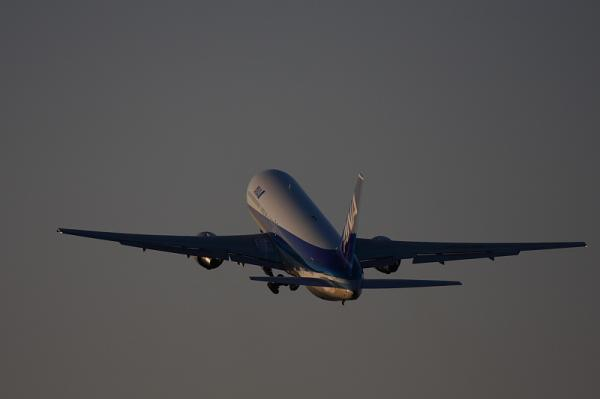 ANA B767-381 NH737@伊丹スカイパーク(by 40D with EF100-400)