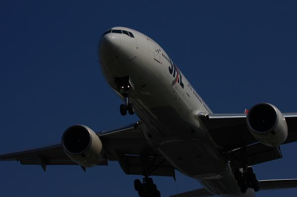 JAL B777-246 JL117@千里川土手付近の植樹園(by 40D with EF100-400)