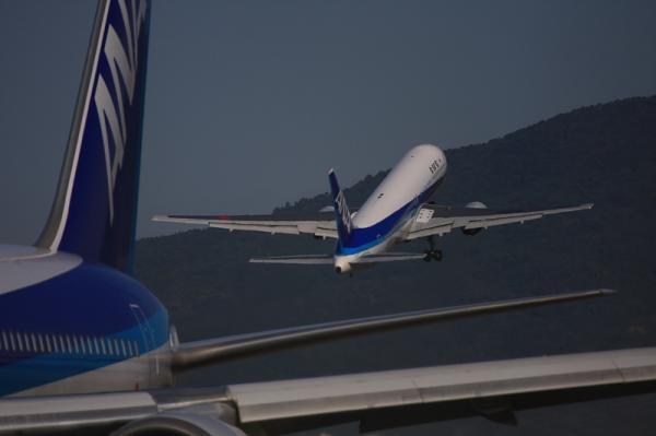 ANA B767-381 NH421@東水門(by 40D with EF100-400)