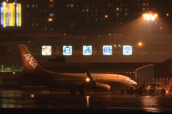 ANA B737-781 GoldJet@伊丹スカイパーク(by 40D with EF100-400&三脚)