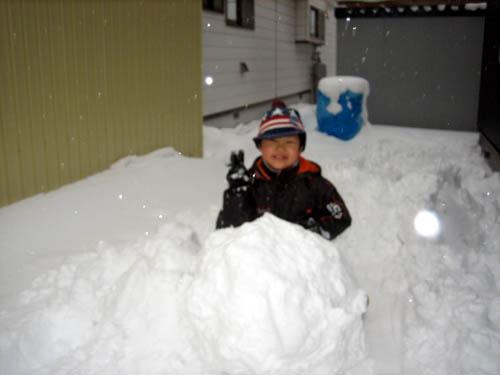 大きな雪だるまを作ってるかーくん