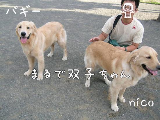 200909031.jpg