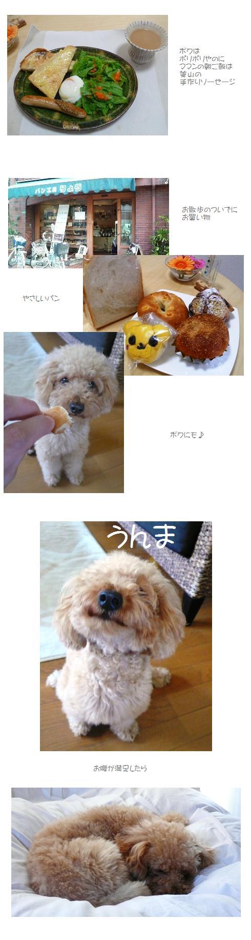 asa1_20081201052937.jpg