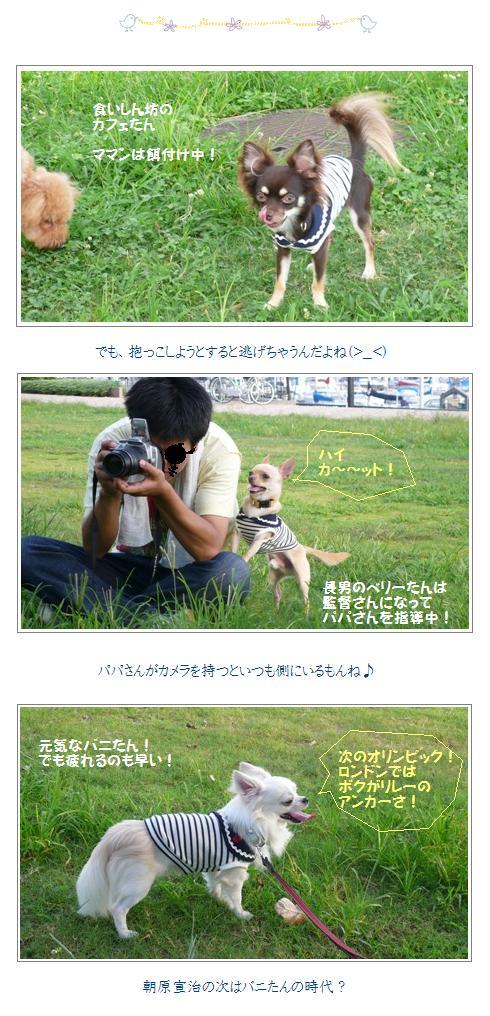 bvc3_20081001023200.jpg