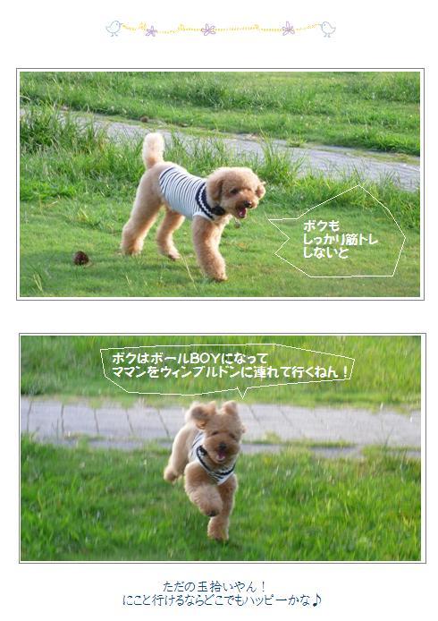 bvc4_20081001023322.jpg