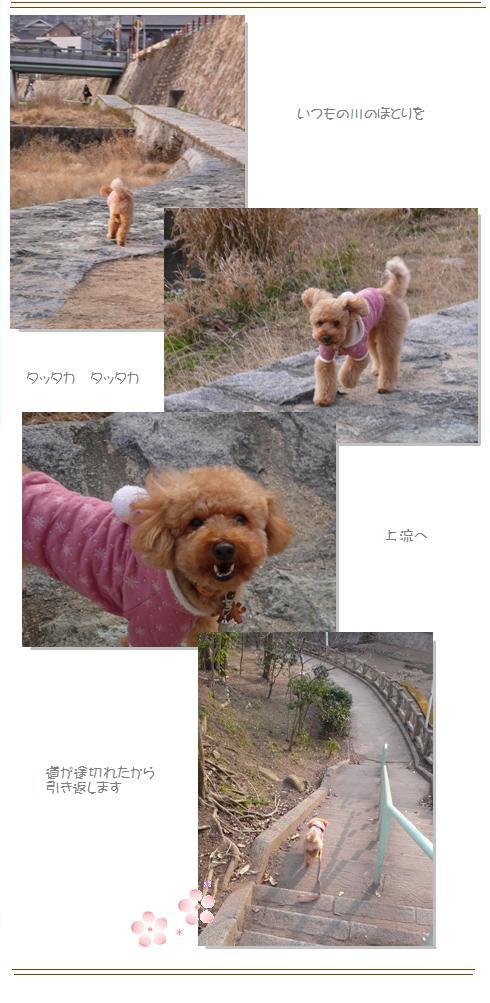 go2_20090302020125.jpg