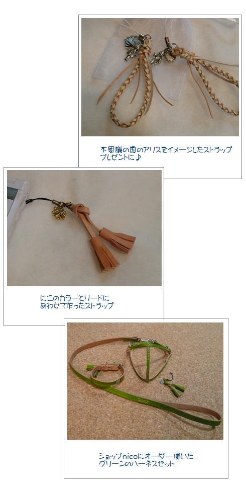 hd1_20090105131550.jpg
