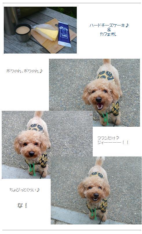 hi2_20081027223759.jpg