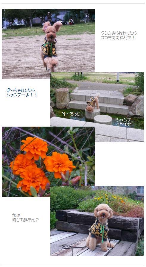 hi3_20081027224052.jpg