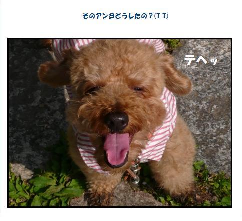 ka3_20090520013724.jpg
