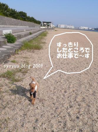 kh4_20090527013217.jpg