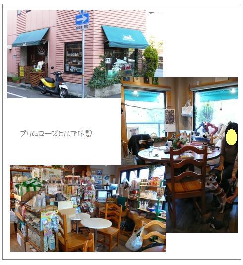 kk5_20090105042558.jpg