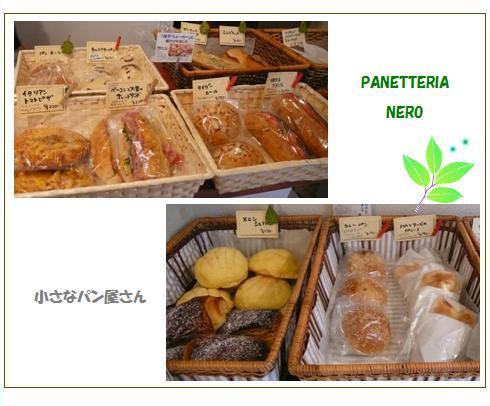 pa2_20090403015816.jpg