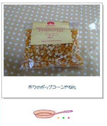 pop1_20090306154632.jpg