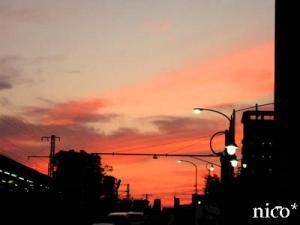 11-11-29sora.jpg